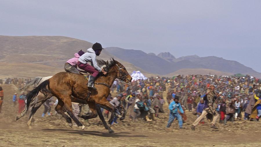 Horse Racing Culture