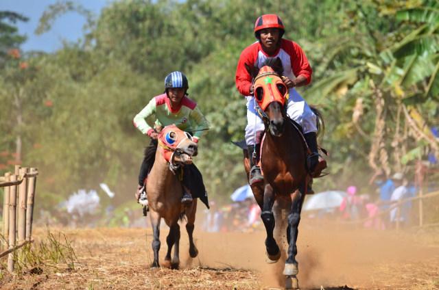taruhan balap kuda